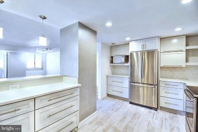 Chevy Chase Condo For Sale: 4601 N Park Avenue #818