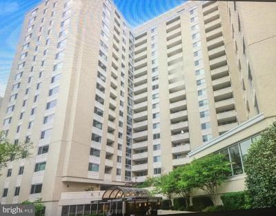 Chevy Chase Condo For Sale: 4601 N Park Avenue #208-H