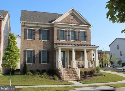 Clarksburg Single Family Home For Sale: 13801 Bufflehead Street