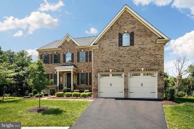 Clarksburg Single Family Home For Sale: 124 Castle Oak Court