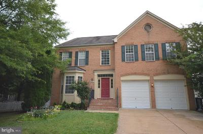 Gaithersburg Single Family Home For Sale: 528 Skidmore Boulevard