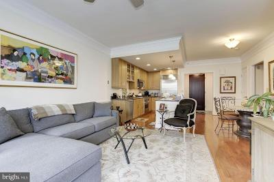 Potomac Condo For Sale: 12500 Park Potomac Avenue #305 S