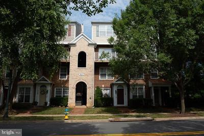Rockville Condo For Sale: 317 Fallsgrove Drive #72