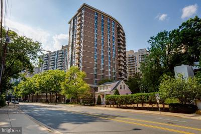 Chevy Chase Condo For Sale: 4620 N Park Avenue #1109E