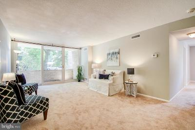 Rockville Condo For Sale: 118 Monroe Street #110