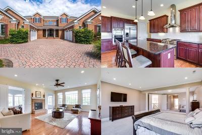 Potomac Single Family Home For Sale: 10519 Rivers Bend Lane
