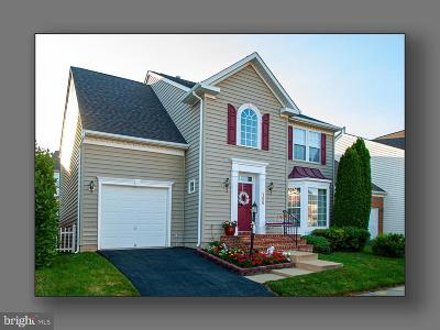 Gaithersburg Single Family Home For Sale: 796 Summer Walk Drive