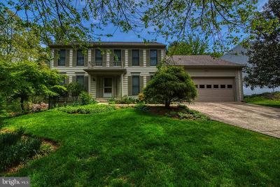Olney Single Family Home For Sale: 17429 Macduff Avenue
