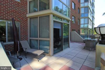 Silver Spring Condo For Sale: 3100 N Leisure World Boulevard #123