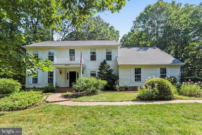 Gaithersburg Single Family Home For Sale: 23541 Rolling Fork Way