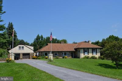 Mount Airy Single Family Home For Sale: 26700 Mullinix Mill Road