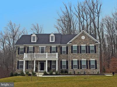 Laytonsville Single Family Home For Sale: 20309 Wiley Court