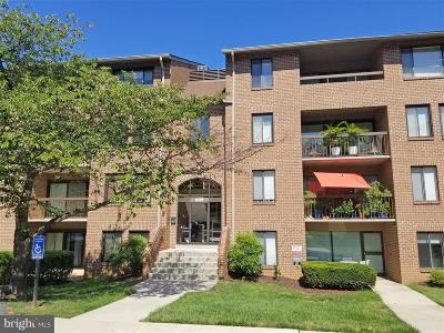 Rockville Condo For Sale: 11309 Commonwealth Drive #103