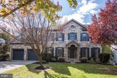 Rockville Single Family Home For Sale: 13606 Pine View Lane