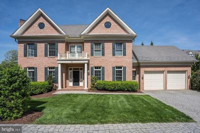 Potomac Single Family Home For Sale: 28 Sandalfoot Court
