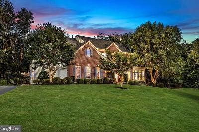 Montgomery County Single Family Home For Sale: 12806 Navigators Lane