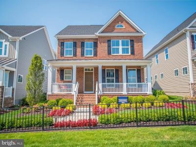 Clarksburg Single Family Home For Sale: 14203 Jaeger Road