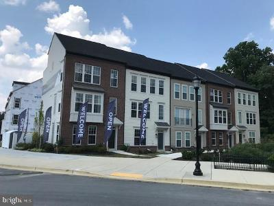 Silver Spring Townhouse For Sale: 2531 Auden Drive