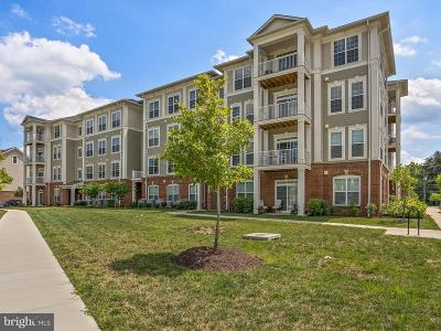 Silver Spring Condo For Sale: 3750 Clara Downey Avenue #37