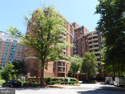 Bethesda Condo For Sale: 4808 Moorland Lane #503