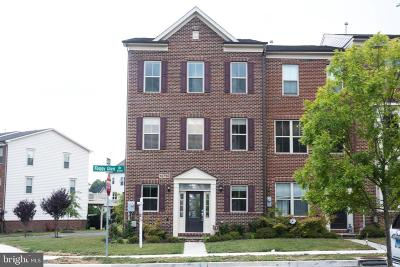 Silver Spring Townhouse For Sale: 13750 Foggy Glen Drive