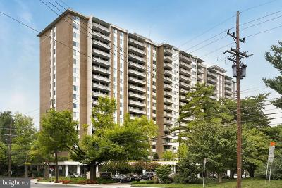 Bethesda MD Condo For Sale: $239,000