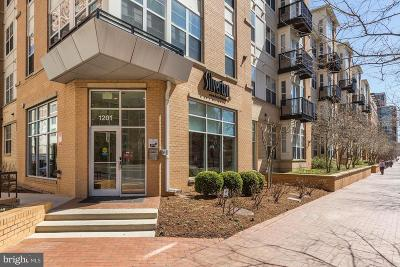 Silver Spring Condo For Sale: 1201 East West Highway #237