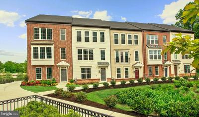 Silver Spring Townhouse For Sale: 2513 Auden Drive