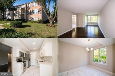 Silver Spring Condo For Sale: 2509 McVeary Court #10CD