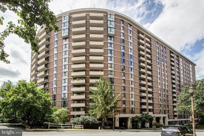 Chevy Chase Condo For Sale: 4620 N Park Avenue #404W