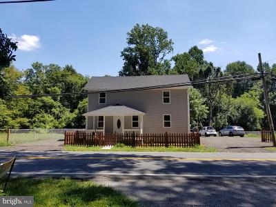 Montgomery County Single Family Home For Sale: 20011 New Hampshire Avenue