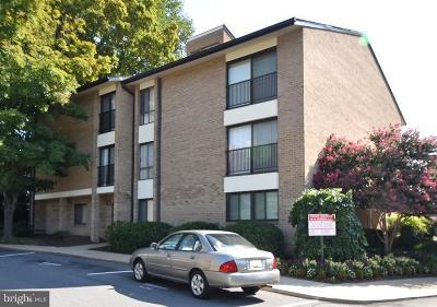 Rockville Condo For Auction: 110 Monroe Street #201