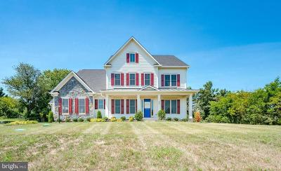 Montgomery County Single Family Home For Sale: 252 Barberry Lane