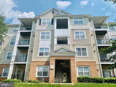 Germantown Condo For Sale: 19606 Galway Bay Circle #402