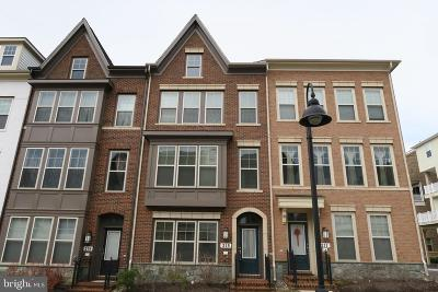 Montgomery County Townhouse For Sale: 215 Strummer Lane