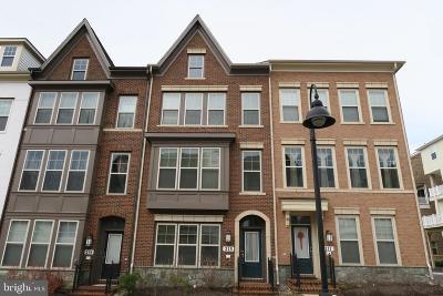 Gaithersburg Townhouse For Sale: 215 Strummer Lane