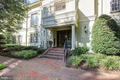 Chevy Chase Condo For Sale: 7222 47th Street #3