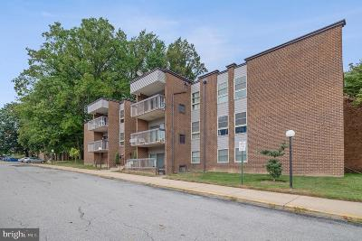 Silver Spring Condo For Sale: 2205 Greenery Lane #204-9