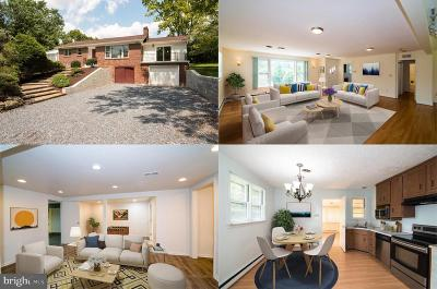 Rockville Single Family Home For Sale: 12540 Falls Road