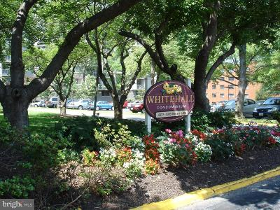 Washington County, Montgomery County, Fairfax County Rental For Rent: 4977 Battery Lane #1-217
