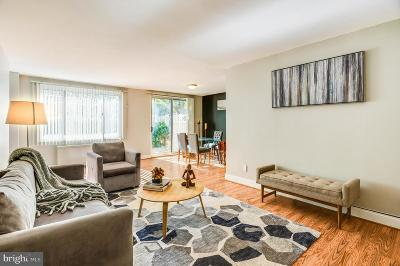 Silver Spring Single Family Home For Sale: 1900 Lyttonsville Road #115