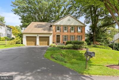 Montgomery Village Single Family Home For Sale: 10025 Dellcastle Road