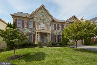 Clarksburg Single Family Home For Sale: 12804 Grand Elm Street