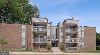 Silver Spring Condo For Sale: 2205 Greenery Lane #102-9