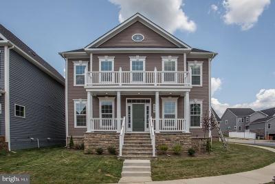 Clarksburg Single Family Home For Sale: 116 Limpkin Avenue