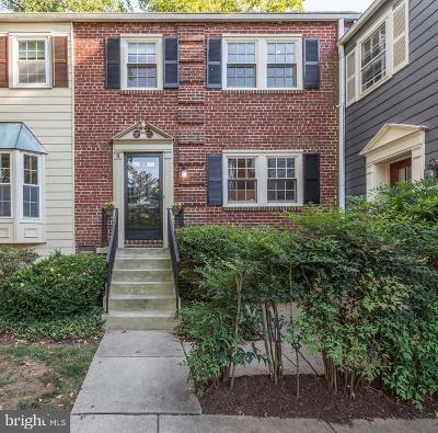 Chevy Chase Condo For Sale: 6617 Hillandale Road #94