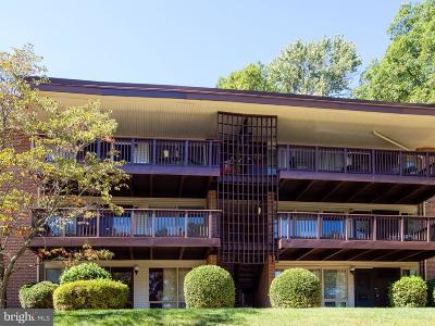 Rockville Condo For Sale: 170 Talbott Street #106