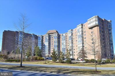 Silver Spring Condo For Sale: 3200 N Leisure World Boulevard #903
