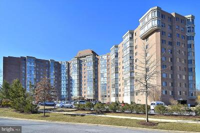 Silver Spring Condo For Sale: 3200 N Leisure World Boulevard #615