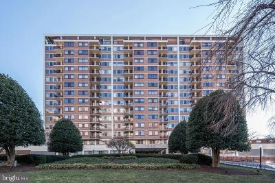 Silver Spring Condo For Sale: 1220 Blair Mill Road #300